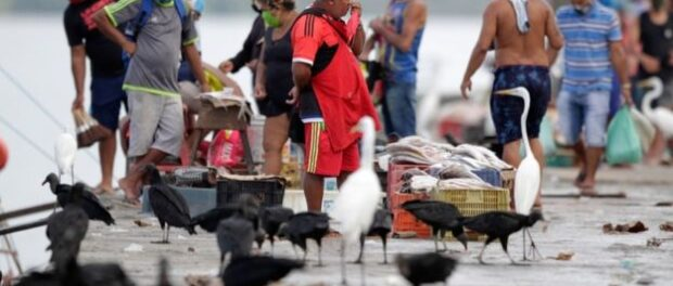 Bolsonaro observes supporters at a rally in Brasilia amid the coronavirus pandemic. Photo - Evaristo Sa, AFP