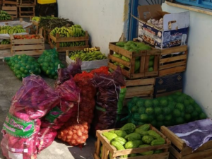 Élida do Nascimento's Inclusion Project in Éden, in the city of São João de Meriti, distributing fresh food to residents. Photo by Élida do Nascimento